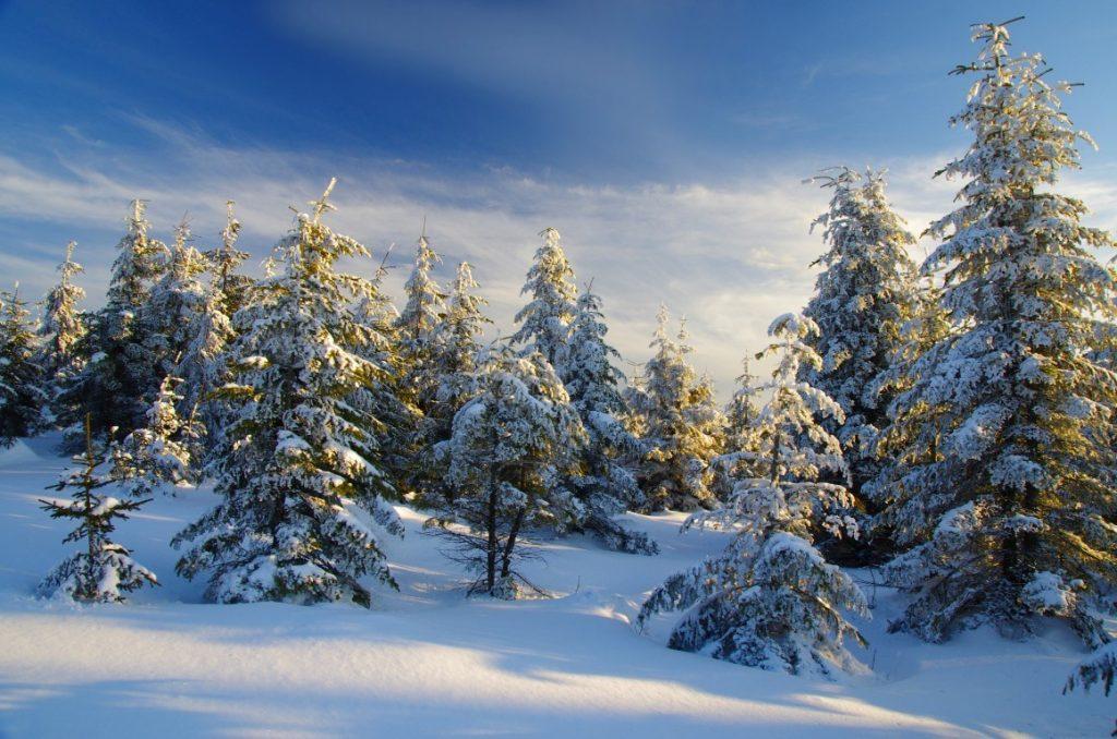 slovenský raj zima