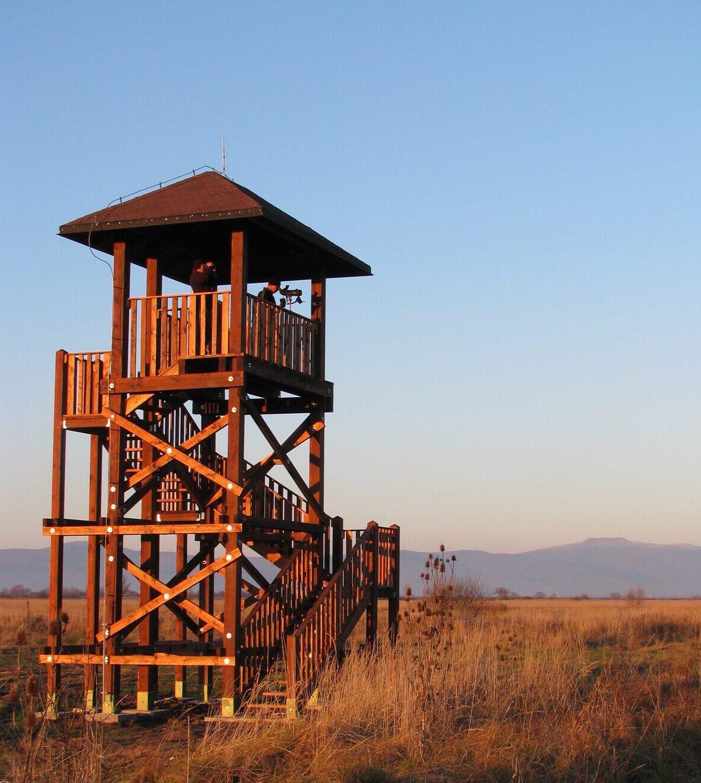senianske rybníky pozorovanie vtáctva birdwatching